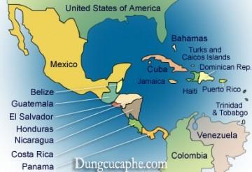 Bản đồ các vùng trồng cà phê châu Mỹ