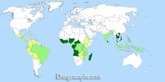 Bản đồ các vùng trồng cà phê hạt thế giới