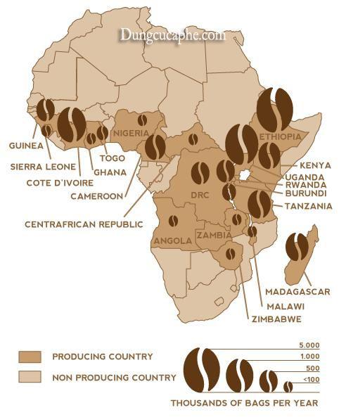 Bản đồ sản lượng vùng cà phê châu Phi