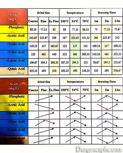 Bảng hiển thị mức độ xay, nhiệt độ và thời gian pha