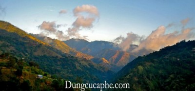 Những dặng núi hùng vĩ Blue Mountain
