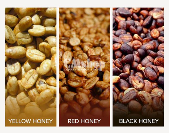 Phương pháp cà phê chế biến bán ướt với 3 loại màu sắc