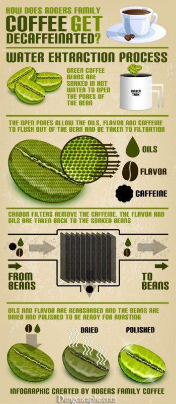 Quy trình chế biến cà phê decaf.