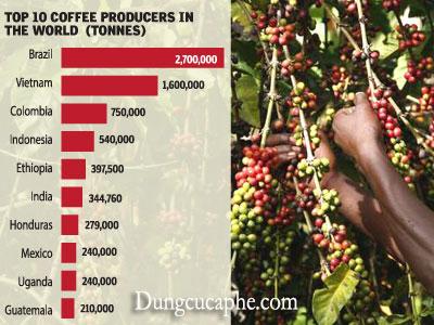 Xuất khẩu cà phê ở Uganda đã vươn lên trên Mexico
